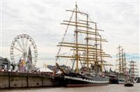 Tall Ships in Antwerp