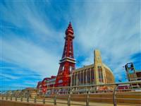 Blackpool Hollies Value Break