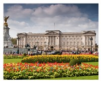 Buckingham Palace & Royal Mews Daytrip