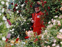 RHS Chelsea Flower Show - St Giles