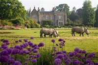 Cotswolds Wildlife and Legoland