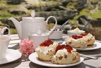Newton Abbot & Cream Tea