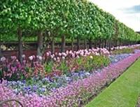 Hampton Court Castle & Gardens & Hereford Day Tour