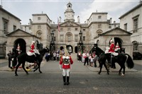 Household Cavalry & Royal London Mews