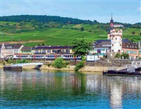 Rhine 19