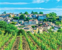 Exceptional Wine Region of Bordeaux
