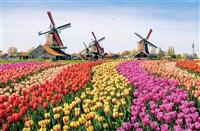 Amsterdam, Delft & Volendam